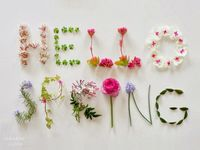 Spring flowers--spring-has-sprung-april-showers